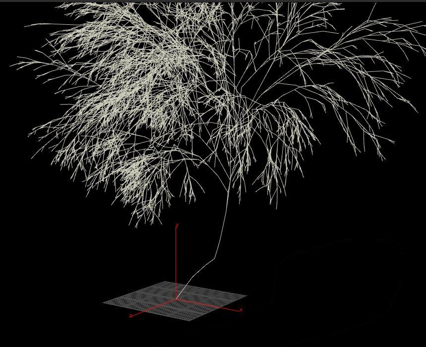 tree-wip2.jpg