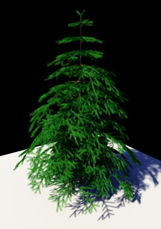 all_tree02.jpg