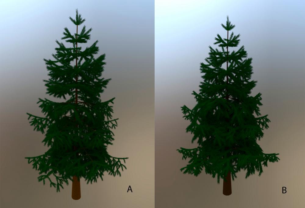 Tree_vars.jpg