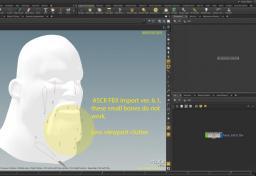 FBX Face RIG Import Problem - Animation & Rigging - od forum