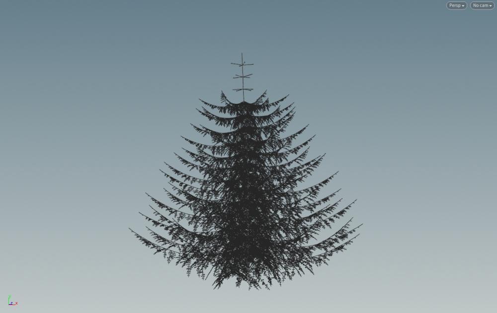 spruce_v001.jpg