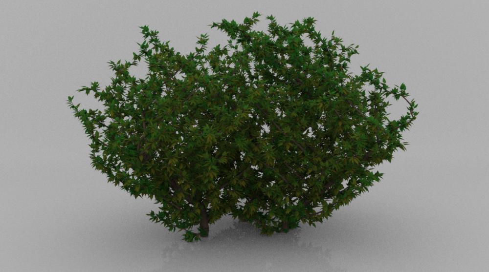 TreeWithLeaves.thumb.PNG.8b797450bb12e5da71dd726e3382e7ca.PNG
