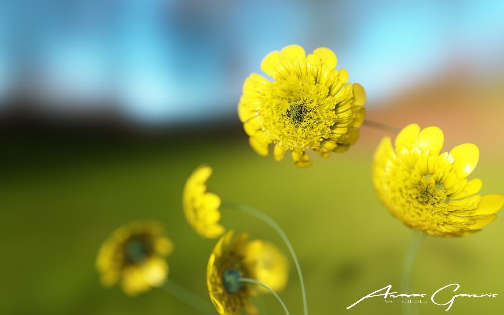 yellowFlowersSign_702.thumb.jpg.ab1166067d157b96c4759721cd140899.jpg