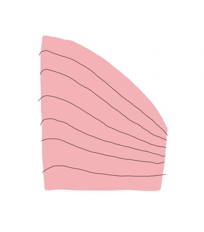 illustration bent lines.jpg