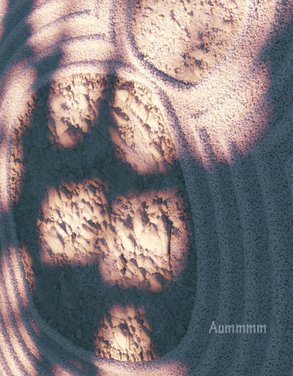 aummmr.thumb.jpg.40facc3e8d2da4c89032748250f710f1.jpg