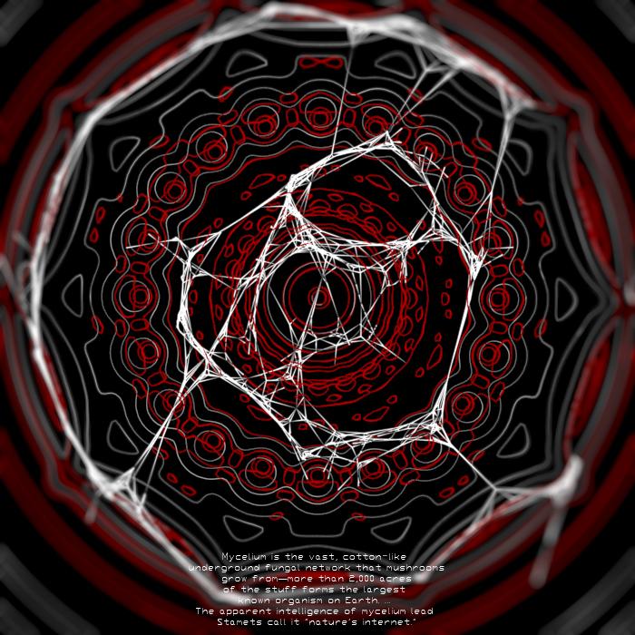 Hackemush141441_0077.jpg.19d9eb7e7ff57aaf7cbd46f7113ad74c.jpg
