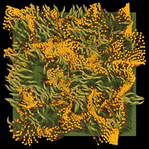 flower_field.jpg.e9e9280689e43aed00735b01a4d4fc31.jpg