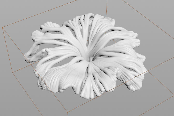 mushroom_05.jpg.1bfae672f183e810c3fff7227566937a.jpg