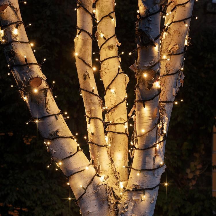 PR50CYWB_Warm-White-Christmas-Tree-Lights-Outdoor-Close_71bd90ec-2359-4271-9341-ef032e7f349b_2000x2000.jpg
