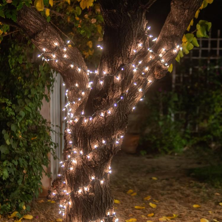 how-to-wrap-trees-with-outdoor-lights-2736361-10-c3fe67cb7b9b44dd9765abd7ccc619ca.jpg